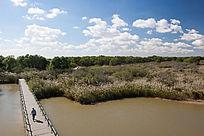 生态湿地栈道
