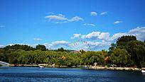 二一九公园劳动湖边的树林与摩天轮