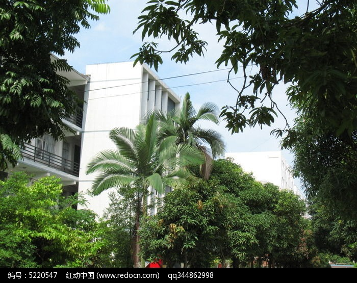 学校教学楼图片