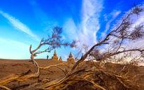 额济纳鬼城沙漠风光