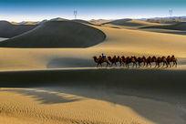 额济纳沙漠风光