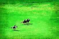 电脑油画《草原骑士》