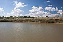 环境优美的湿地