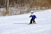 小小滑雪者