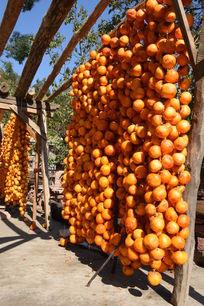 柿子大丰收