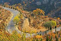 秋天的太行山区道路