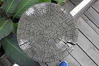 树干年轮纹理图片