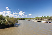 湿地栈道与风车景观