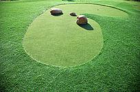 户外心型绿色草坪
