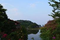 帽峰山森林公园景观