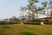 海陵岛海景房绿化带