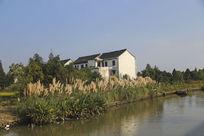 廊下美丽乡村清澈的小河