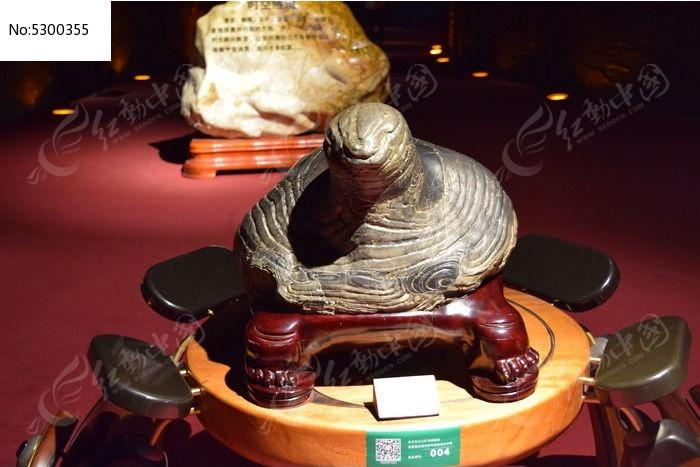 一只乌龟雕塑图片
