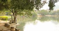 公园的小湖