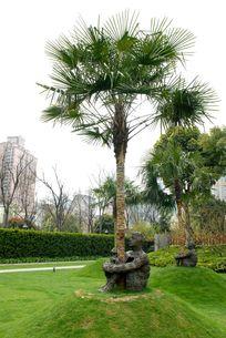 拥抱自然的雕塑