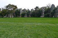 坐在绿草上欣赏云南石林