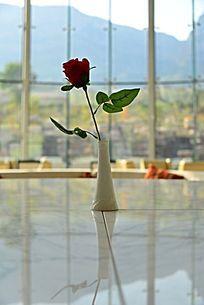 宾馆花瓶里的红玫瑰