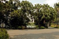 流花湖景观园林