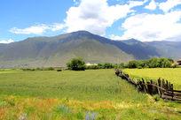 美丽的山旁农场