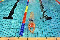 划向终点的游泳比赛选手