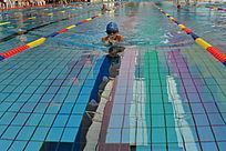 游泳蛙泳比赛