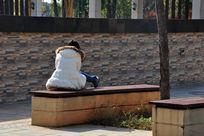 在公园晒太阳的女人