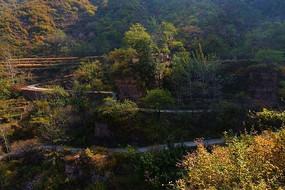 秋色太行山间曲折百回的公路