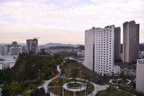 高楼边上的绿色园林