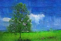 电脑油画《原野之树》