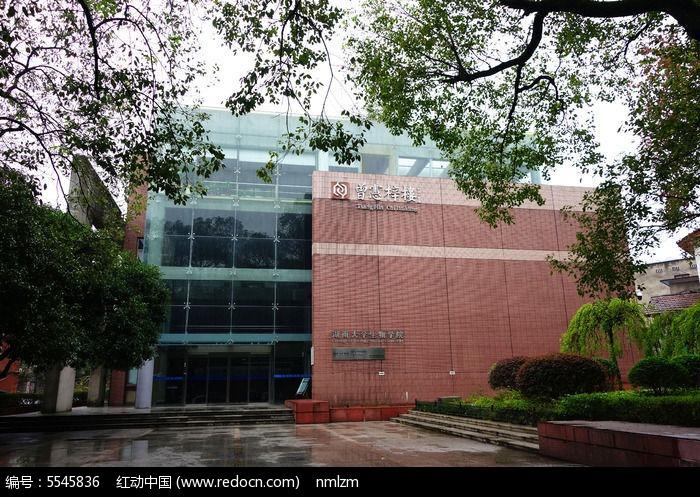 湖南大学生物学院曾宪梓楼旺旺海报设计图片