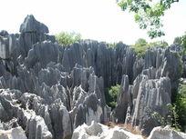 怪石嶙峋的石林