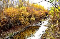 秋天的河流