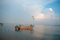 渔船与海鸥