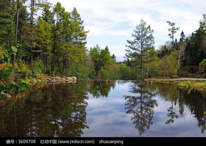 原创摄影图 自然风景 森林树林 宁静的湖水