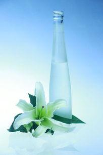 百合花和瓶子静物组合