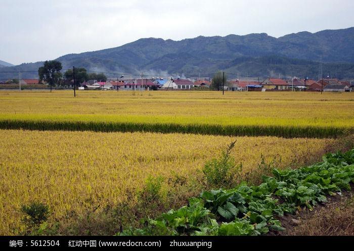 农村风光图片,高清大图