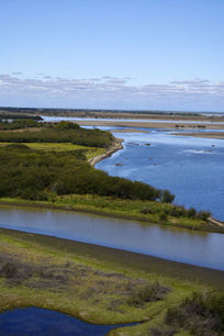 湿地壮丽景观
