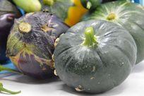 航天南瓜茄子图片