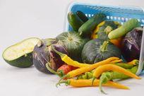 航天蔬菜航天南瓜茄子