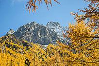 稻城亚丁风景区的高山