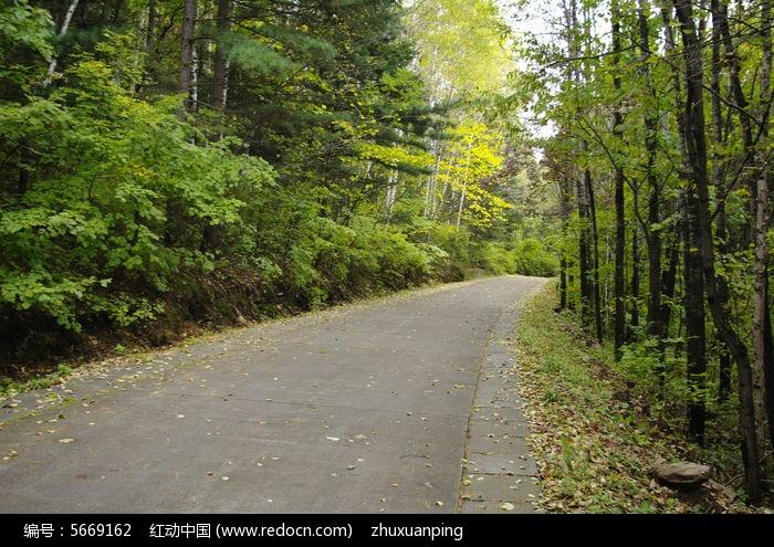 山间公路图片,高清大图_森林树林素材