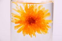 一朵花茶金盏花