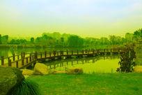 绿色诗韵校园景观