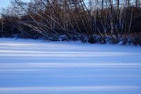 林海雪原风景