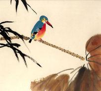 国画荷翠鸟