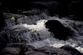 飞溅的小河