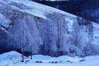 冰封河面树林雾凇