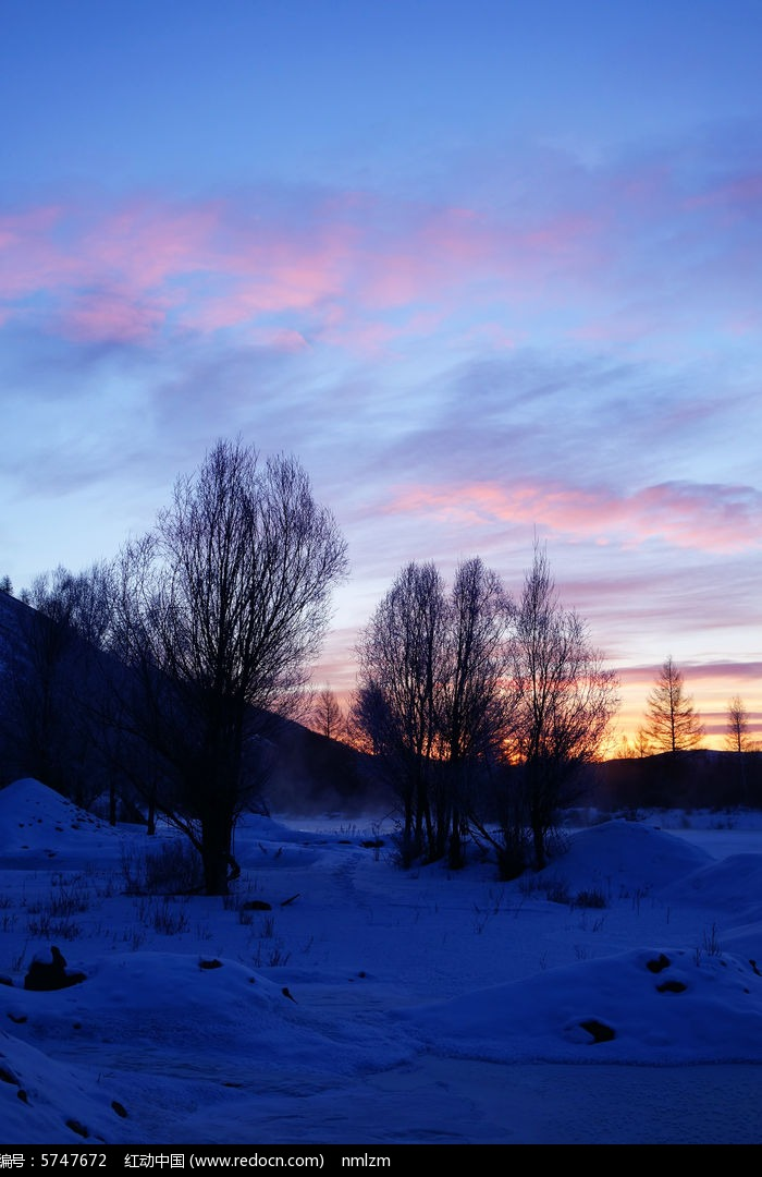 清晨树林雪景