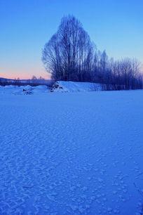 林海雪原树林