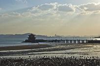 青岛栈桥的风景